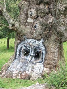 Owl tree at Stour head http://scraptors.blogspot.in/2011/08/owl-tree-at-stourhead.html