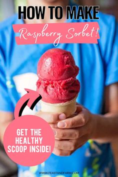 Made with frozen raspberries, you can skip the calories from the store and make your own sorbet at home! With a total of 5 ingredients, you'll be making batches of this to stash in your freezer. Easy Homemade Desserts, Raspberry Sorbet, Healthy Comfort Food, Frozen Desserts, Ice Cream Recipes, Southern Recipes, Raspberries, Freezer, A Food