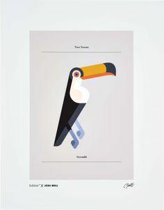 Josh brill affiche josh brill -  toco toucan 40x50cm