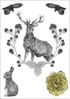 JULY OFFER Flora & Fauna Temporary von DPanesarillustration