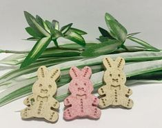bunny teats made with lots of love by FloppyBuntique on Etsy Rabbit Treats, Etsy Seller, Bunny, Place Card Holders, Creative, Cute Bunny, Rabbit, Rabbits, Baby Bunnies