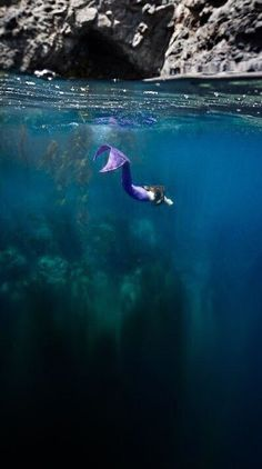 31 Best Deep Blue Sea Images In 2019
