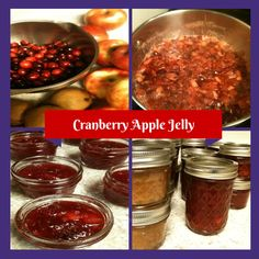 cranberry apple fruit chutney jpeg 005 cranberry apple fruit chutney ...