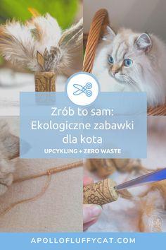 Wcale nie musisz kupować drogich zabawek dla kota, bo przecież możesz zrobić je sam z materiałów, które już masz w domu! Przygotowałam dla Ciebie instrukcje krok po kroku jak zrobić ekologiczne, upcyklingowe zabawki dla Twojego kota. Blog, Lifestyle, Diy, Bricolage, Blogging, Do It Yourself, Homemade, Diys, Crafting