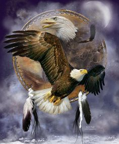 Spirit Eagle sacred messenger flying strong and solitary surviving and soaring taking us beyond our fears carrying our dreams to the Universe.  Spirit Eagle prose by Carol Cavalaris  This artwork of a bald eagle in flight, with an eagle head behind, within a dream catcher, is from the Dream Catcher Collection by Carol Cavalaris.