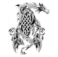 People all over the world have been fascinated by the age-old creature known as dragon! To the Celts the dragon represents wisdom and nobility Dragon Tattoo Flash, Celtic Dragon Tattoos, Dragon Tattoo Designs, Celtic Symbols, Celtic Art, Celtic Knots, Art Viking, Viking Dragon, Dragon 2