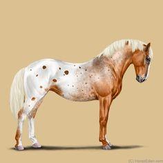 Horse Eden: Fun Horse Game For Equestrians Mare Horse, Appaloosa Horses, Horse Artwork, Horse Paintings, Pastel Paintings, Horse Drawings, Animal Drawings, Pretty Horses, Beautiful Horses