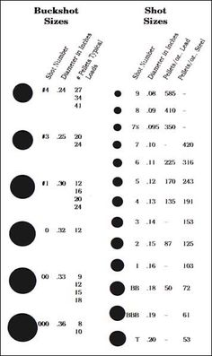 12 Gauge Shotshell Sizes Bing Images Reloading Ammo Hunting S