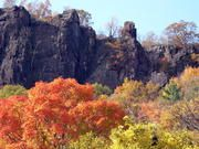 """PROTECT THE PALISADES says """"we need you whether near or far to help keep the momentum going. We just launched a petition targeting Englewood Cliffs Mayor Joe Parisi and LG's US honcho William Cho. We need to get it to tens of thousands of people so LG and Englewood Cliffs start realizing that we're tens of thousands strong."""": Click here to sign the petition: http://www.protectthepalisades.org/parisi_cho_petition"""