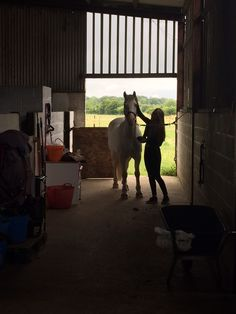 | The Jacksons BIG Equestrian Picture Competition #horse #equestrian #yard #photography