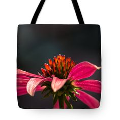 Echinacea Lady Tote Bag for Sale by Nicole Carmine