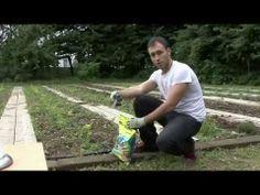 Coltivare l'orto! Pacciamatura biodegradabile #Concime #naturale #biologico  http://www.verdevivo.it/granulari-myspace/concime-minerale-composto.aspx