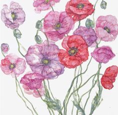 Poppies (JT04) Pink Floral Art Print by Jess Trotman http://www.thewhistlefish.com/product/jt04f-poppies-framed-art-print-by-jess-trotman