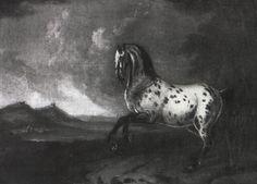A piebald horse in a landscape by Johann Georg de Hamilton