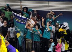 Uncw basketball schedule - More information Basketball Bracket, Outdoor Basketball Court, Basketball Scoreboard, Basketball Floor, Basketball Plays, Basketball Pictures, Basketball Legends, Baseball Jerseys, Basketball Games Online