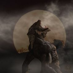 I have a screenplay for a horror/comedy/action/thriller and the wereolf role I'd love to play is badass! Bark At The Moon, Howl At The Moon, Fantasy Creatures, Mythical Creatures, Dark Fantasy, Fantasy Art, Werewolf Art, Vampires And Werewolves, World Of Darkness