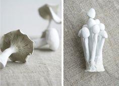 mushrooms by starling brood