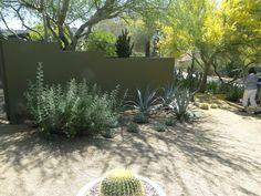 52 Best Modern Phoenix Images Phoenix Homes Modern