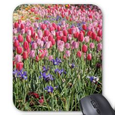 festival of tulips mousepad