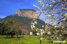 Serra de Tramuntana (Mallorca)