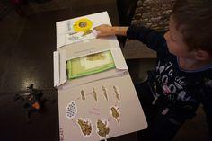 kreatywnyMaks: Lapbook Płazy