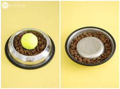 Some dogs are fast eaters, inhaling their food more than chewing and swallowing it. Eating too quickly can cause stomach issues and can easily result in vomiting. Slow your dog down by placing an object in their food bowl as an obstacle. They have to work around the object, forcing them to eat slower. One popular method is to place a small bowl upside down in the center of their food dish, which keeps the food around the outside of the bowl where it's more difficult to reach.