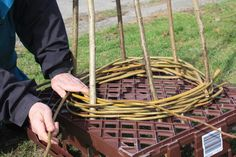 Yesterday, Saturday 9th March, Kate led a workshop in the farmyard, attended by five willing weavers, who learnt how to make a bean wigwam ...