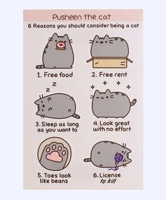 "Pusheen ""6 reasons"" sticker sheet - Hey Chickadee"