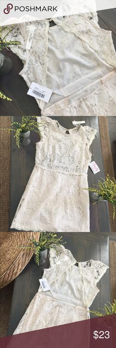 NWT! Cream Lace back cutout dress Size Large San Joy lace back cutout dress! Size Large. NWT! Cream in color! Beautiful shoulder capped sleeves. Chic and dainty! Pair with boots or your favorite wedge sandal! San Joy Dresses Midi