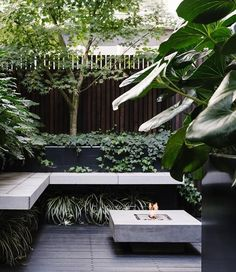 An outdoor fireplace ensures this terrace garden remains a destination, even in the cooler months. Clever use of space and a green-on-green palette has transformed this inner-city terrace into a private oasis courtesy of Lisa Ellis Gardens. Outdoor Rooms, Outdoor Gardens, Outdoor Living, Outdoor Patios, Outdoor Kitchens, Modern Gardens, Outdoor Landscaping, Small Gardens, Indoor Outdoor