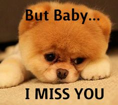 i miss you quotes | But Baby... I Miss You