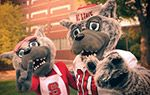 I graduated from NC State University with a degree in agriculture education and a minor in animal science.