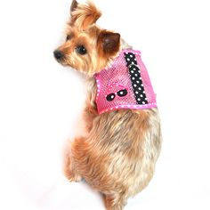 """""""Under The Sea"""" Sunglasses Cool Mesh Wrap-around-Velcro Harness Vest and matching Leash Set"""