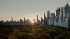 New York (Central Park) Timelapse