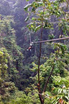 Flight of the Gibbon zip line Chiang Mai  Thailand