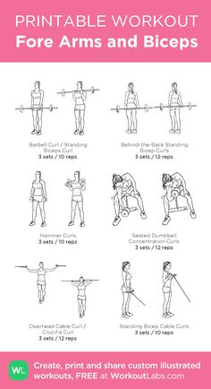 Fore Arms and Biceps · WorkoutLabs Fit Arm Workout Men, Bicep And Tricep Workout, Gym Workout Plan For Women, Forearm Workout, Fitness Workout For Women, Fitness Diet, Lifting Workouts, Gym Workouts, Gym Plans