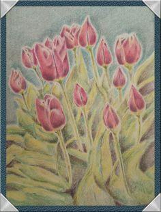 Tulips colored pencil
