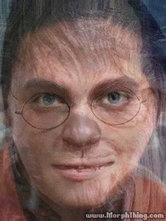Elvis Presley, Gollum, Harry Potter, Chewbacca (Morphed) - MorphThing.com