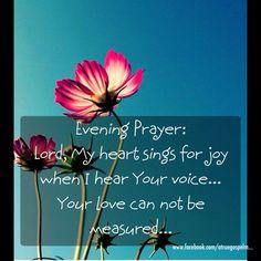 Evening Prayer: Lord, Your love can not be measured... #eveningdevotion #eveningprayer #seekgod #listen #sheep #jesussaves #teamjesus #godislove #moms #grace #teens #grandmas #love #eternallife #believethegospel #truth #trust #secure #preach #praise #prayer #joy #love