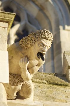 Gargoyle by Michael D Page - Gloucester Cathedral