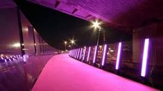 Image result for auckland pink cycleway