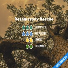 Respiratory Rescue - Essential Oil Diffuser Blend