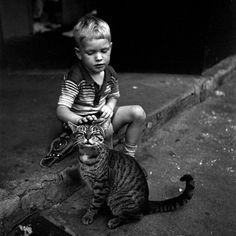 Vivian Maier, Boy and Cat, New York City, 1954