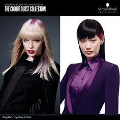 The Colour Burst Collection #EssentialLooks Fall/Winter 2013