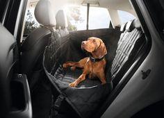 Quem costuma levar o animal de estimação para viagens de carro sabe que é difícil tomar conta do bichinho. Confira os lançamentos da Audi para facilitar a viagem.