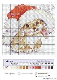 Bekijk de foto van toerzeilster met als titel kerst konijn en andere inspirerende plaatjes op Welke.nl.