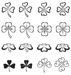 Leaves of clover vector on VectorStock®