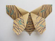 Origami Matthews Butterfly Step 14