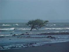 Praia do Panaquatira, São Luís/MA.