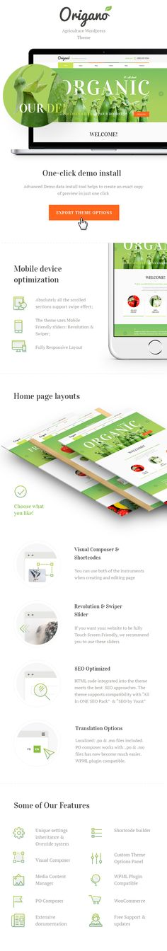 CURRENT VERSION 1.5 (see Change log at the bottom of this page)   Origano, with its excellent clean design, is an ideal option for organic food related websites: agricultural business, health...